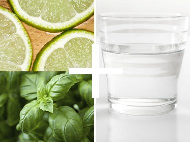 Lime Basil Refreshing Flavor Tap