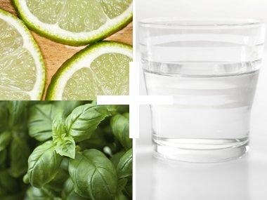 Lime Basil Refreshing Flavor Tap